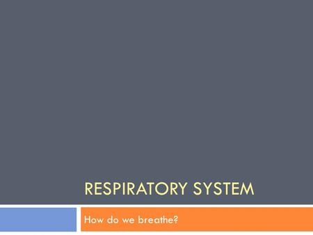 RESPIRATORY SYSTEM How do we breathe?. Warm Up 10/31/11 Answer the following questions in your notes (your side): 1. What organ helps us to breathe? 2.