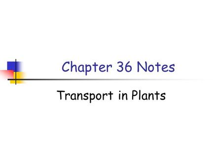 Chapter 36 Notes Transport in Plants. Concept 36.1.