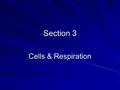 Section 3 Cells & Respiration. Food & Energy We know that the body needs energy from food in order to move, keep warm and grow The chemical process by.