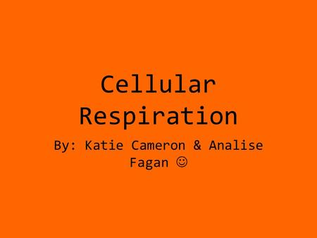 Cellular Respiration By: Katie Cameron & Analise Fagan.