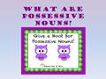 What are possessive nouns?. First, let's remember what a NOUN is. A noun is a person, place, thing, or idea.