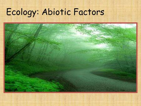 Ecology: Abiotic Factors. Ecology: Abiotic Factors Unit Concept: Everything is connected to the non-living environment.