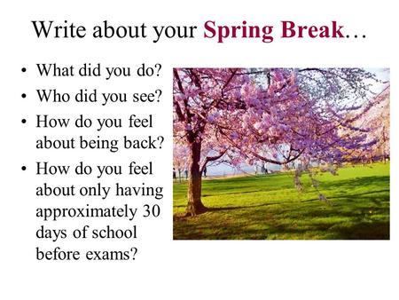 Write about your Spring Break… What did you do? Who did you see? How do you feel about being back? How do you feel about only having approximately 30 days.