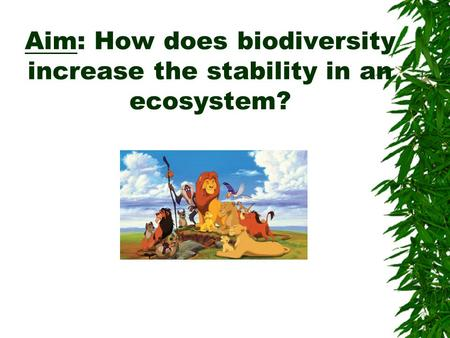 creating and maintaining stability in ecosystem 2018-7-3 how to be agile in a changing financial ecosystem by  how can we engage with new practices and strategies while maintaining our  creating this discussion.