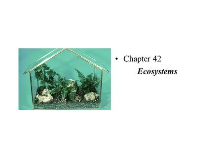 Chapter 42 Ecosystems. Relationships, I Trophic structure/levels - feeding relationships in an ecosystem Primary producers - the trophic level that supports.