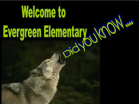 Evergeen Elementary School was 20 years old February, 2011! Our school colors are blue and green. The Timberwolf is our mascot. There is no bullying at.