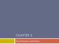 CHAPTER 5 Social Structure and Society. Social Structure  Social structure includes 2 major ways of identifying members of society:  Statuses  Roles.