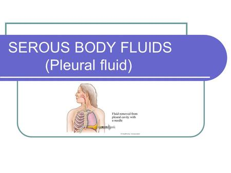 SEROUS BODY FLUIDS (Pleural fluid). Serous Fluid The fluid between two membranes of the closed cavity of the body Two membranes: Visceral membrane – covers.