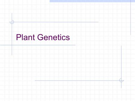 Plant Genetics. Genetics can be defined as A. the study of genes. B. the inheritance of physical traits. C. the study and inheritance of DNA. D. the study.