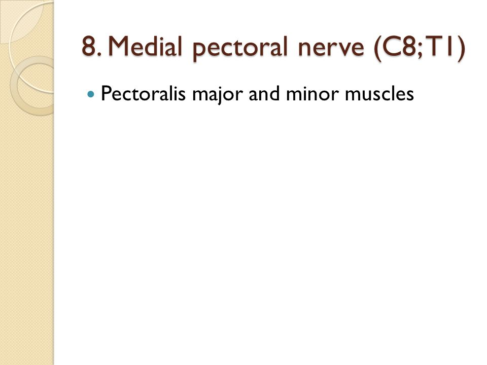 9. Medial cutaneous nerve of arm(C8; T1) Skin of medial side of arm
