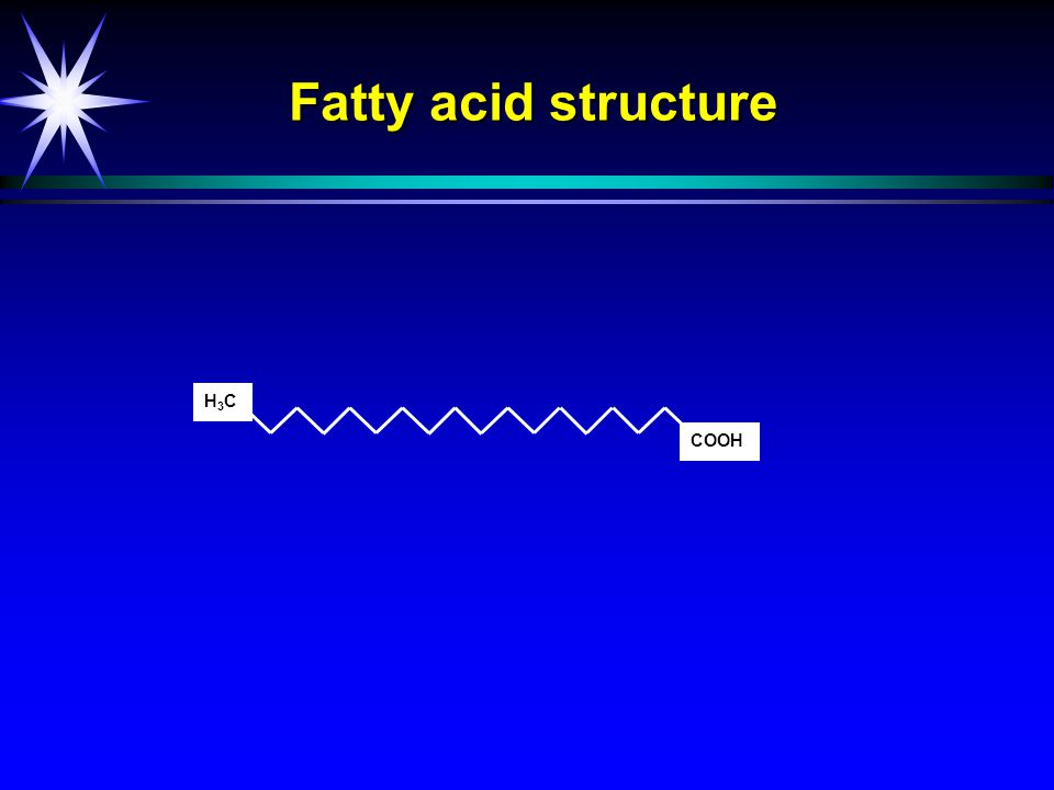 Fatty acid structure and nomenclature COOH H3CH3C H3CH3C H3CH3C Stearic acid18:0 Oleic acid 18:1  -9 Linoleic acid 18:2  -6  -Linolenic acid18:3  -3 H3CH3C COOH Mammals cannot insert double bonds in here 9 6 3 Omega =  - = n-