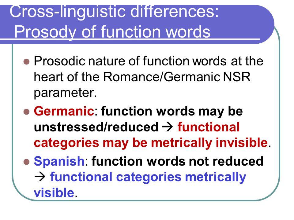 The prosodic status of (semi)-function verbs.