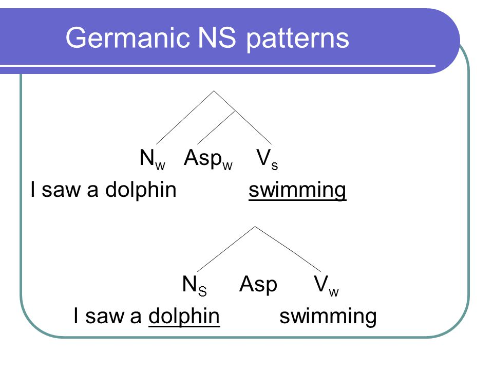 Germanic NS: Compositional Compounds N S N W mice hunt-ing 'the hunting of mice' N W N S night hunt-ing 'hunting at night'