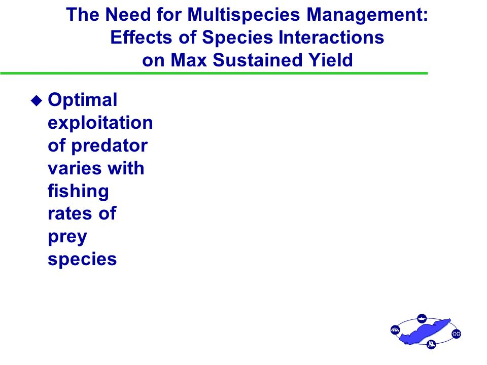 The Need for Multispecies Management: Effects of Species Interactions on Max Sustained Yield u Optimal exploitation of predator varies with fishing rates of prey species