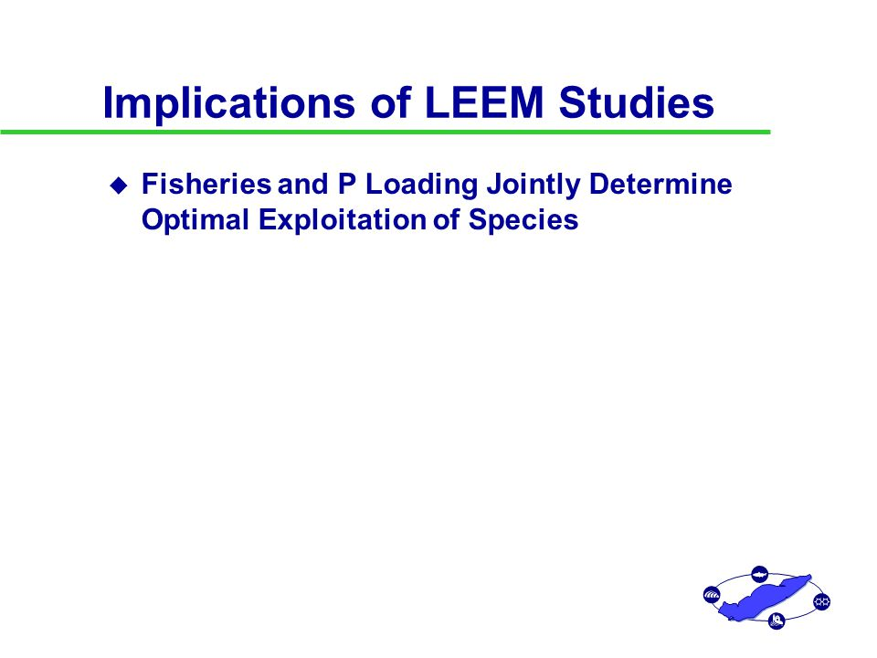 Implications of LEEM Studies u Fisheries and P Loading Jointly Determine Optimal Exploitation of Species u Derivation of Quotas for Single Species without Considering Interactions Can Lead to Overexploitation Prey and predators cannot be managed independently