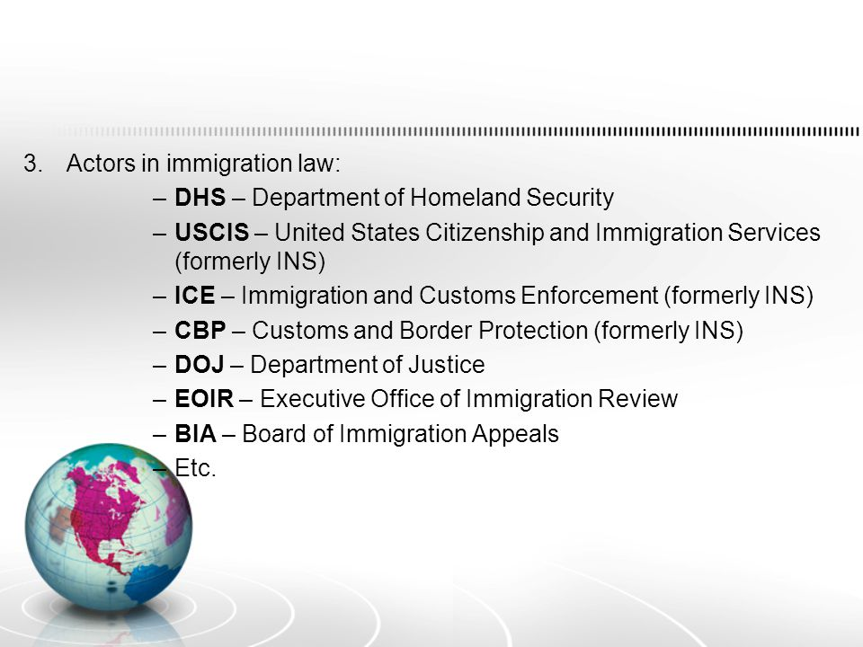 B) Four main categories of immigration status in the U.S.: 1.Citizen 2.Lawful Permanent Resident 3.Nonimmigrant 4.Undocumented.