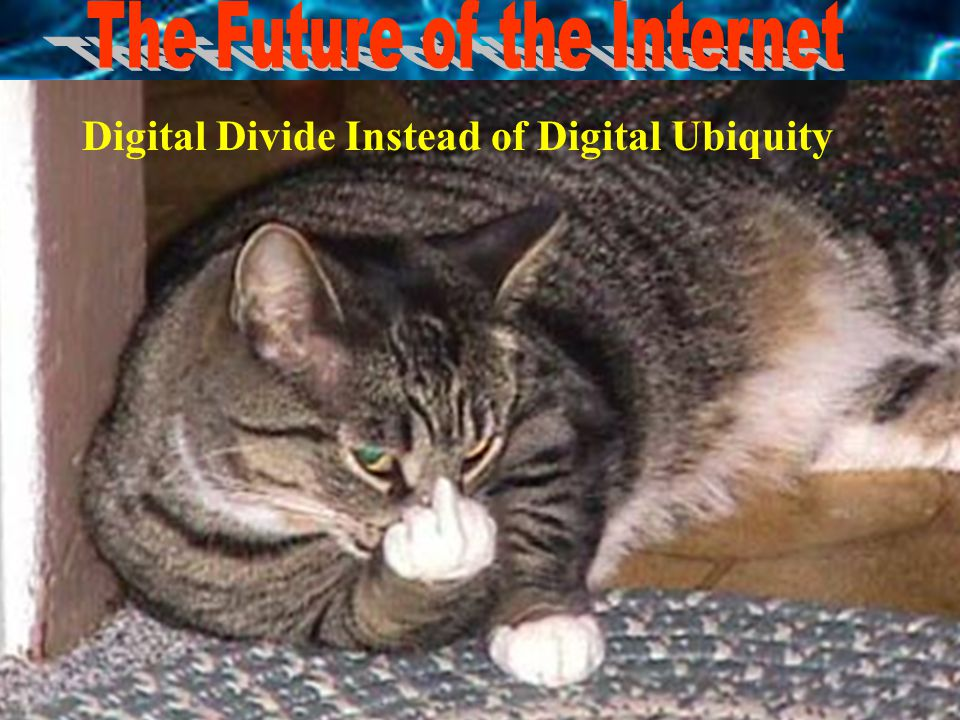 NAT EXPERTS created the NAT Roulette DIAL Digital Divide Instead of Digital Ubiquity