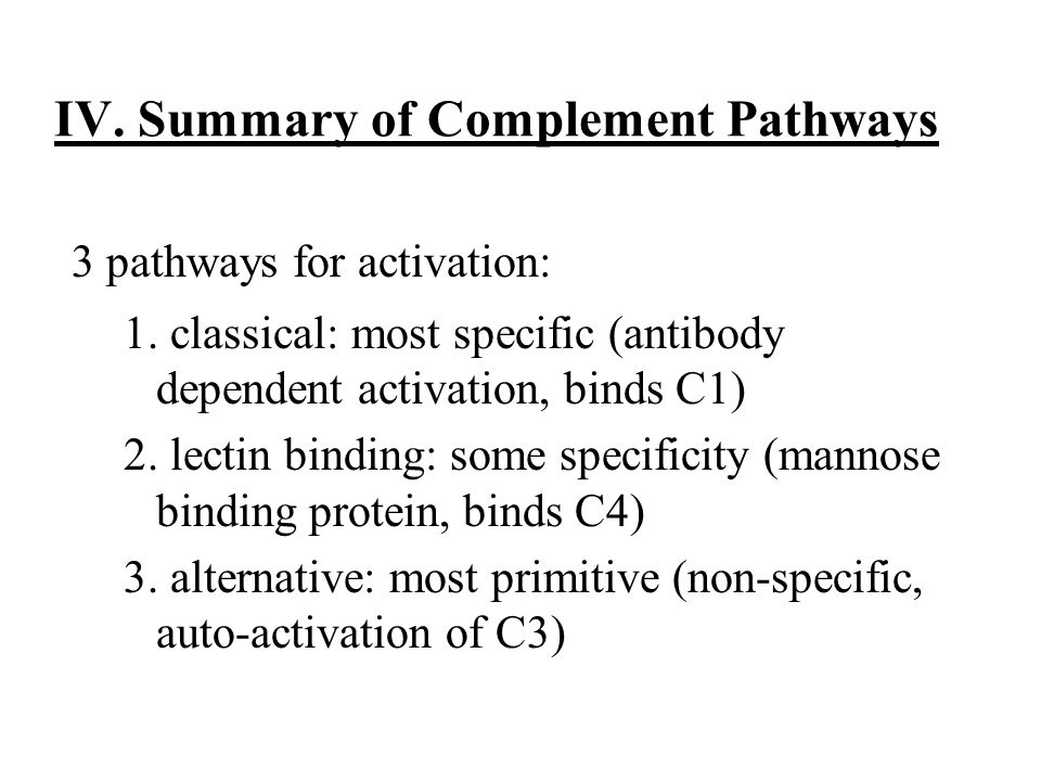 Complement System Activation Amplification Biologic Function Regulation