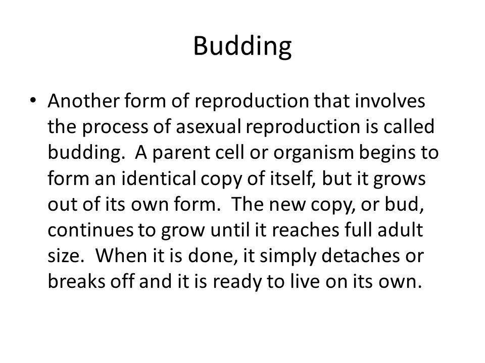 Sexual Reproduction Most organisms reproduce sexually.