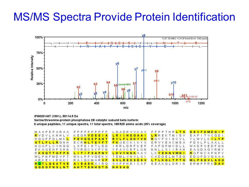 Complex Samples MUST be Fractionated Before MS Analysis Digest Ion exchange Fractionation MuDPITGel Based