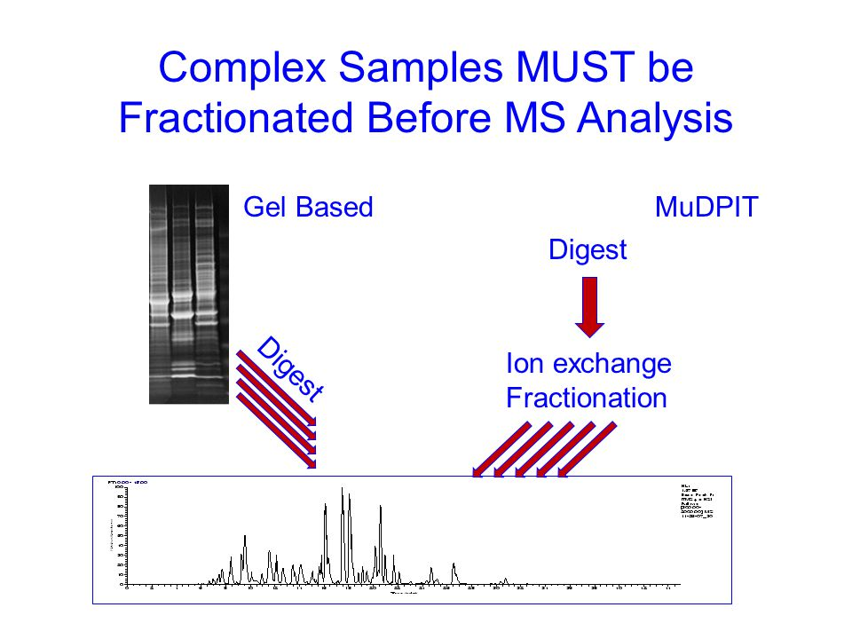 Data Analysis and Presentation  MS/MS data is processed through Bioworks 3.3.1 using the Sequest algorithm.
