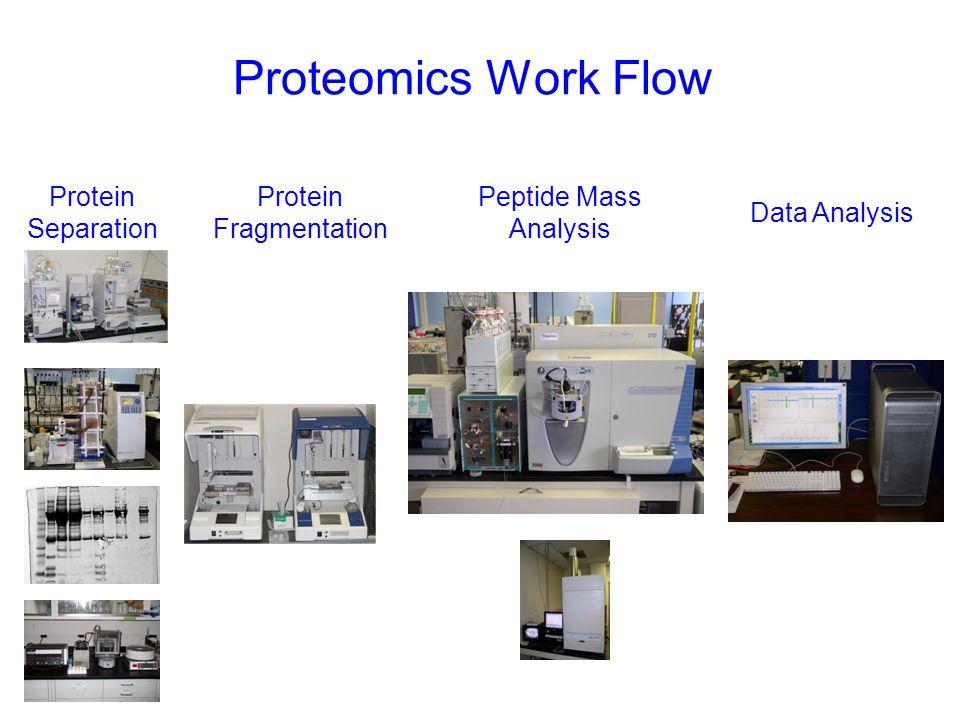 Proteomics Core Utilization Grows