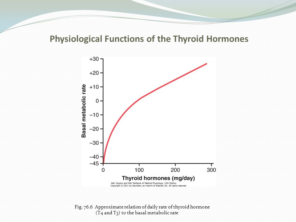 Physiological Functions of the Thyroid Hormones Effect on the Cardiovascular System a.Increased blood flow and cardiac output b.Increased heart rate c.Increased heart strength d.Normal arterial pressure Increased Respiration Increased Gastrointestinal Motility Excitatory Effects on the CNS Muscles React With Vigor