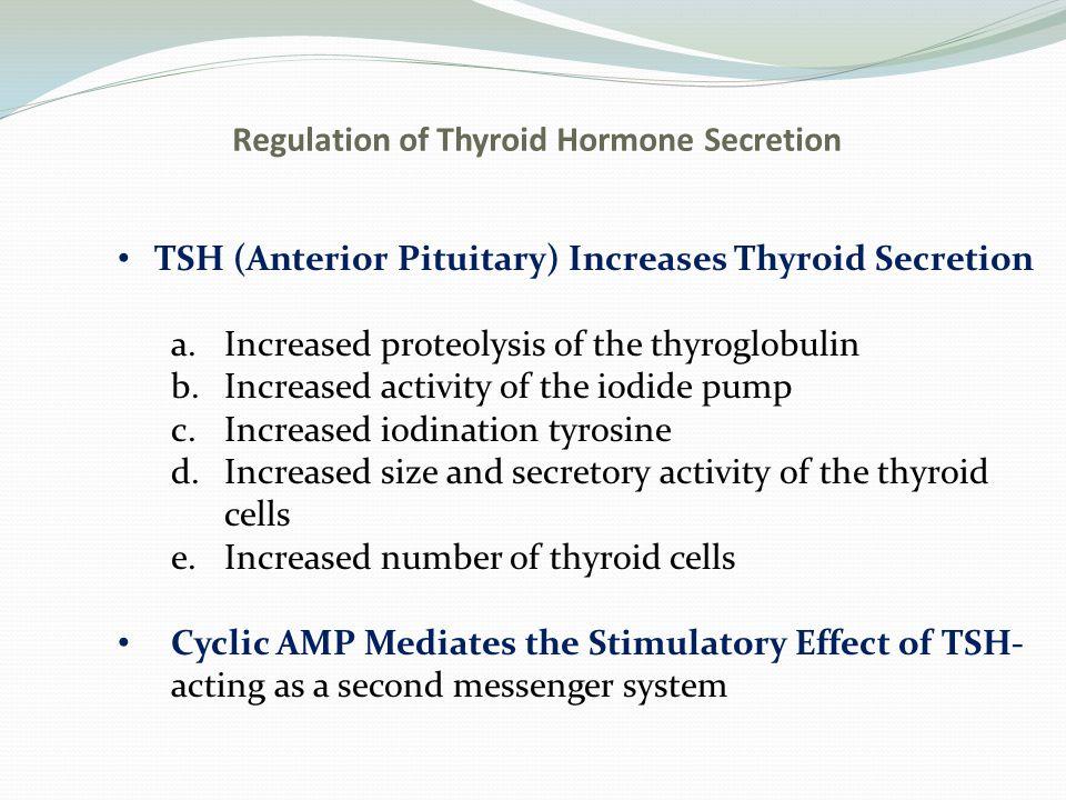Regulation of Thyroid Hormone Secretion Secretion of TSH is Regulated by Thyrotropin- Releasing Hormone from the Hypothalamus Feedback Effect of Thyroid Hormone to Decrease the Secretion of TSH Fig.