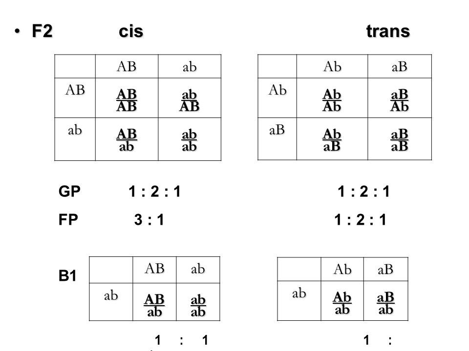 Recombination – incomplete linkage A aA Bb B a b A b A a B b a B A B A aa b Bb A b A a BbBb a B cis trans Non-recombinant AB ab Ab aB Recombinant Ab aB AB ab