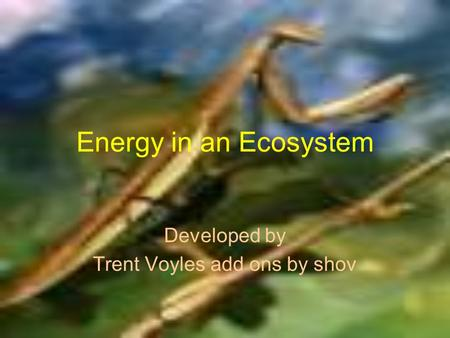 Energy in an Ecosystem Developed by Trent Voyles add ons by shov.