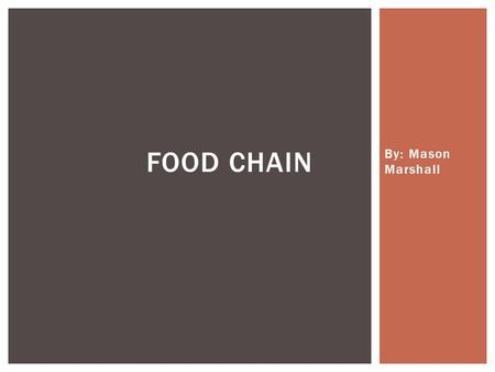 By: Mason Marshall FOOD CHAIN. An ordered arrangement of animals and plants in which each feeds on the one below it in the chain. ProducersHerbivoresCarnivores.
