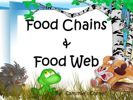 Food Chains & Food Web By: Cammie's Corner. All living things need food for energy. You have read that the energy for all living things comes from the.