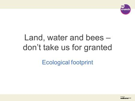 Land, water and bees – don't take us for granted Ecological footprint.