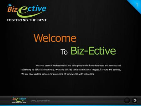 Www.bizecive.com Welcome To Biz-Ective We are a team of Professional IT and Sales people who have developed this concept and expanding its services continously.
