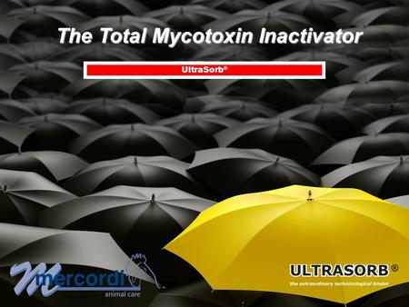 The Total Mycotoxin Inactivator UltraSorb ®. STRENGTH OF UltraSorb ® : Scientific criteria supporting Scientific criteria supporting the superiority of.