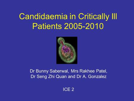 Candidaemia in Critically Ill Patients 2005-2010 Dr Bunny Saberwal, Mrs Rakhee Patel, Dr Seng Zhi Quan and Dr A. Gonzalez ICE 2.