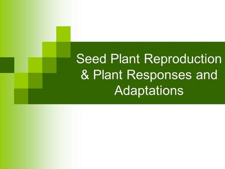 Seed Plant Reproduction & Plant Responses and Adaptations.