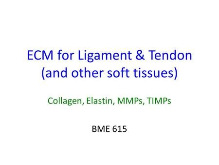 ECM for Ligament & Tendon (and other soft tissues) Collagen, Elastin, MMPs, TIMPs BME 615.