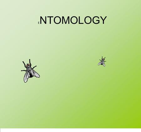 E NTOMOLOGY. A part from bacteria and fungi, insects are the most important processors of dead animal and human remains Insects utilize decomposing tissues.