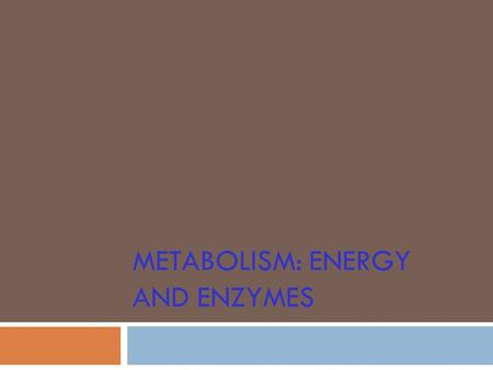 METABOLISM: ENERGY AND ENZYMES. Metabolism: Energy and enzymes  Types of Energy  Solar: ultimate source for living organisms  Kinetic: energy of motion.