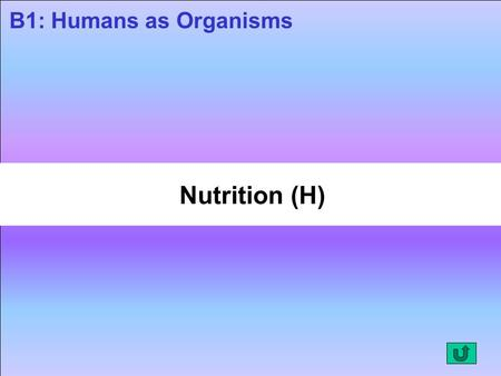 Nutrition (H) B1: Humans as Organisms. Nutrition The digestive system digests (breaks down) food and absorbs the products of digestion into the blood.