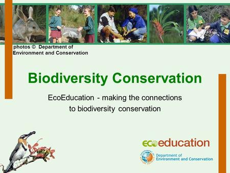 Biodiversity Conservation EcoEducation - making the connections to biodiversity conservation photos © Department of Environment and Conservation.