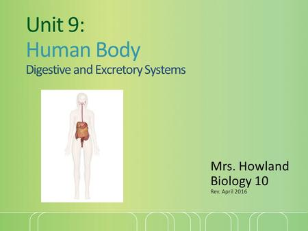 Unit 9: Human Body Digestive and Excretory Systems Mrs. Howland Biology 10 Rev. April 2016.