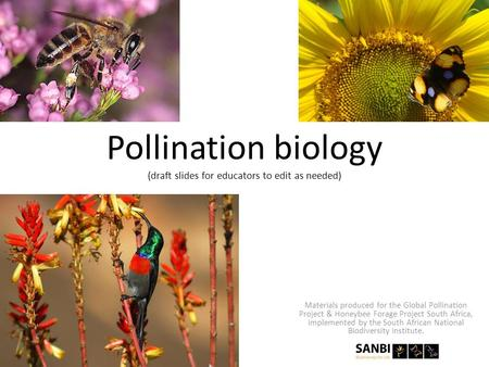 Pollination biology (draft slides for educators to edit as needed) Materials produced for the Global Pollination Project & Honeybee Forage Project South.