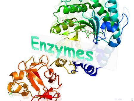 1 Images. What Are Enzymes? proteinsMost enzymes are proteins catalystAct as a catalyst to accelerate a reaction Not permanentlyNot permanently changed.
