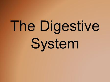 The Digestive System. What is the Function? The digestive system takes the food you eat, breaks it down, and turns it into energy you can use to fuel.