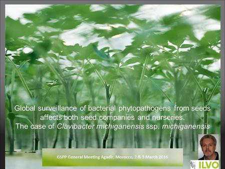 Global surveillance of bacterial phytopathogens from seeds affects both seed companies and nurseries. The case of Clavibacter michiganensis ssp. michiganensis.