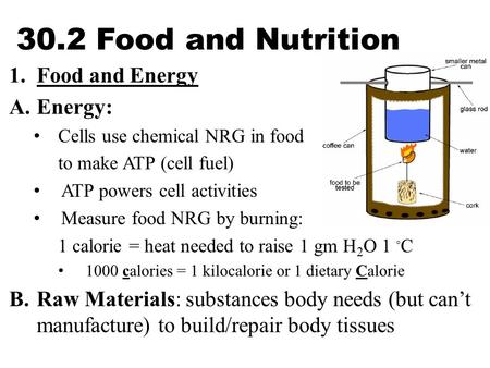 30.2 Food and Nutrition 1.Food and Energy A.Energy: Cells use chemical NRG in food to make ATP (cell fuel) ATP powers cell activities Measure food NRG.