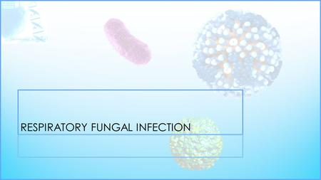 RESPIRATORY FUNGAL INFECTION. YEASTMOULD FUNGIDIMORPHIC FUNGI OpportunisticPrimary Infectious Candidiasis (Candida and other yeast) Aspergillosis (Aspergillus.