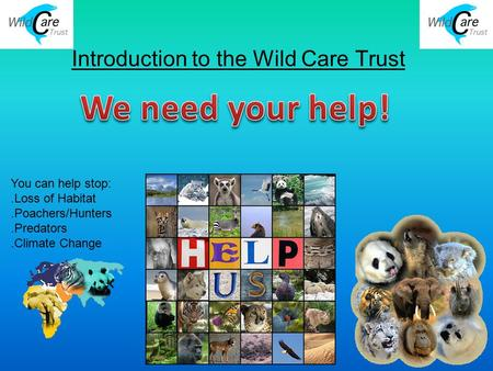 Introduction to the Wild Care Trust You can help stop:.Loss of Habitat.Poachers/Hunters.Predators.Climate Change.